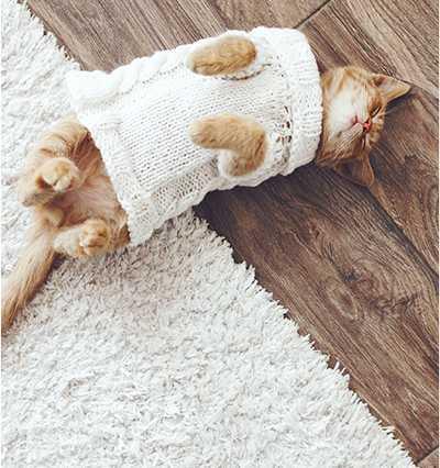 Удаление мочи и запахов домашних животных